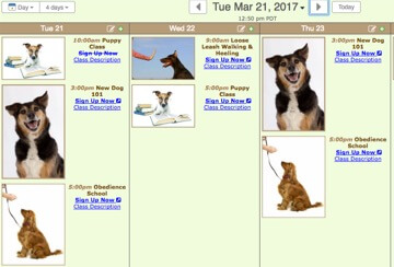 Dog Training class calendar
