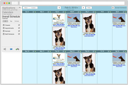 Dog grooming and class calendar